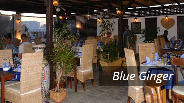 Blue Ginger - Greece - Athens